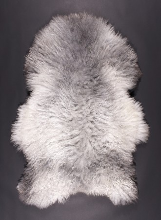 PELS SAU-mouton-gris-clair-850k
