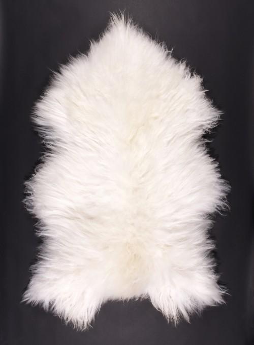 SPAELSAU-mouton-blanc-325k