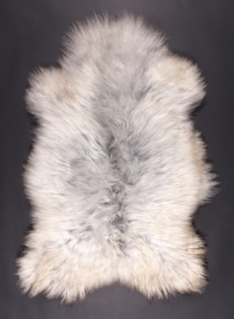 SPAELSAU-mouton-blanc-gris-clair-350k