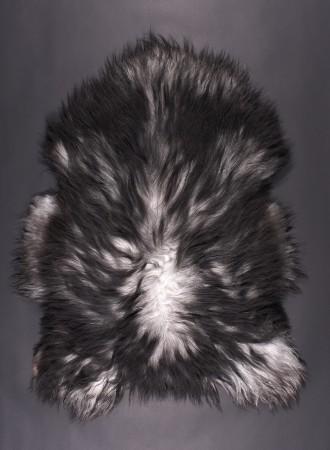 SPAELSAU-mouton-noir-gris-blanc-350k