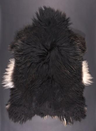 SPAELSAU-mouton-noir-marron-blanc-2-350k