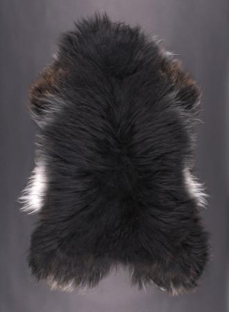 SPAELSAU-mouton-noir-marron-blanc-350k