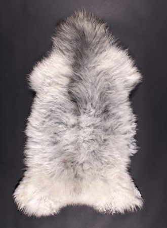 VILLSAU-mouton-blanc-gris-350k